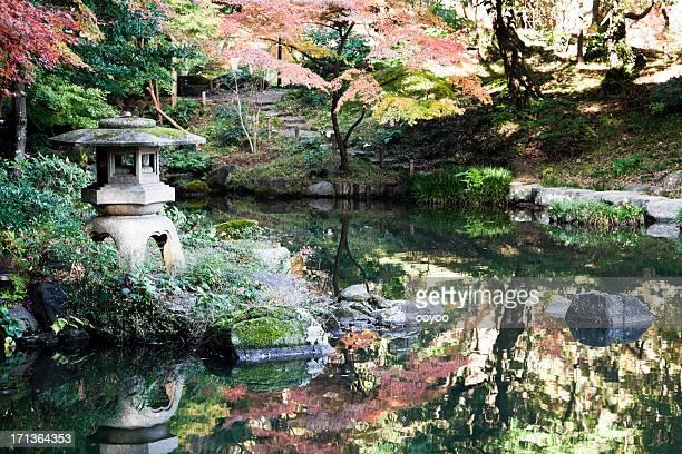秋の日本庭園 - 日本庭園 ストックフォトと画像
