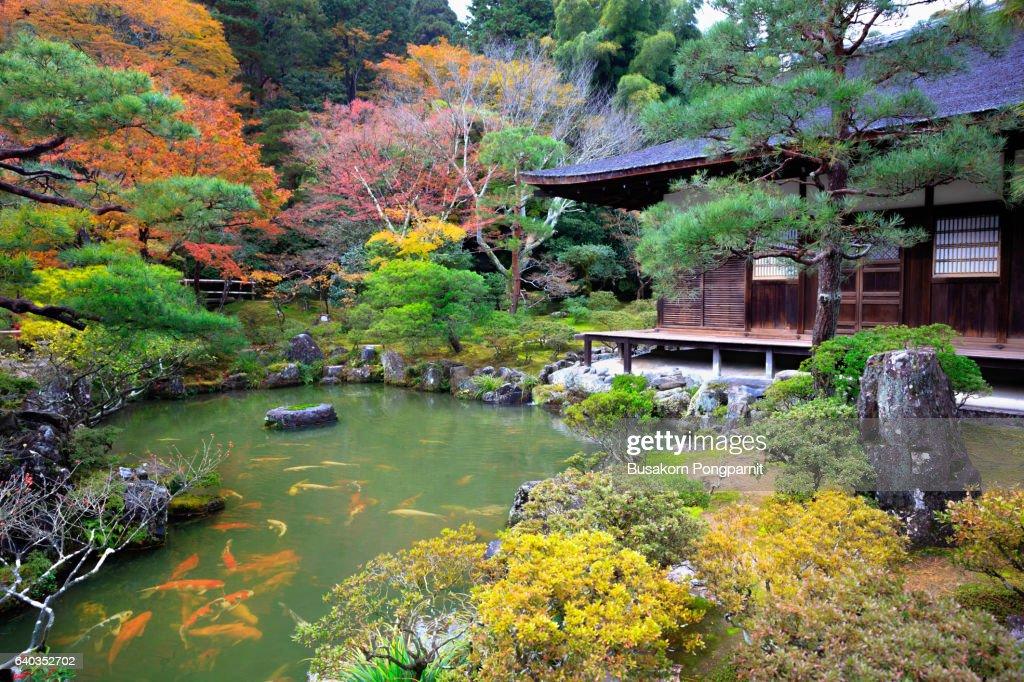 Japanese Garden In Ginkakuji Temple Kyoto Japan High Res Stock