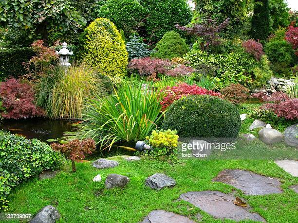 japanese garden - water garden stock pictures, royalty-free photos & images
