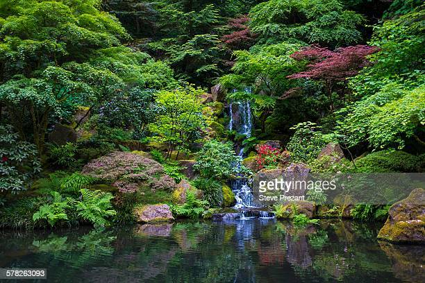 japanese garden, portland, oregon, usa - japanese garden stock photos and pictures