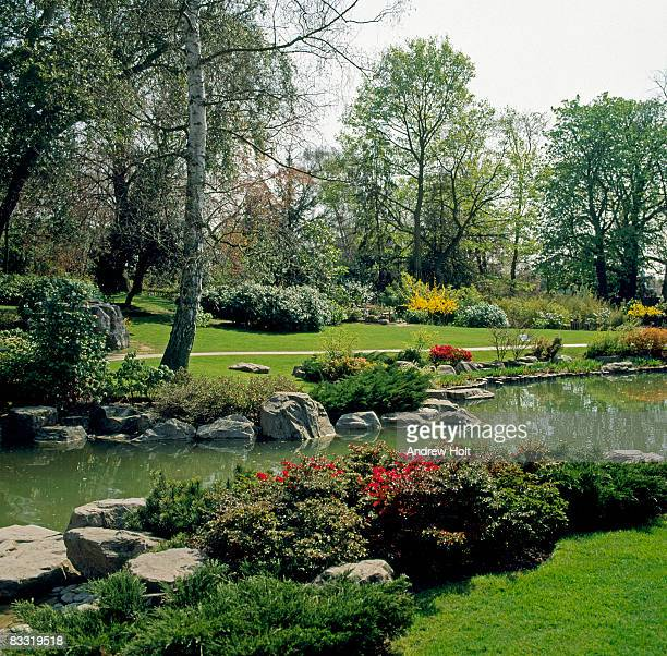 japanese gardens in holland park, london - holland park stock pictures, royalty-free photos & images