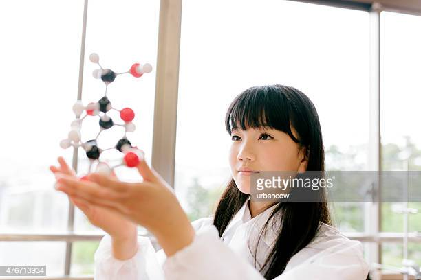 Japanese high school. Students study, science laboratory, holding molecular model