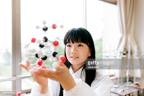 日本の高校ます。 学生研究、科学研究、保持モレキュラーモデル