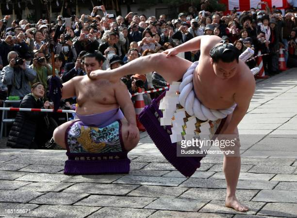 Japanese highest rank sumo wrestler Hakuho Sho performs ritual to entertain the gods during the Mitsuyama Taisai Festival of Itate Hyozu Shrine at...
