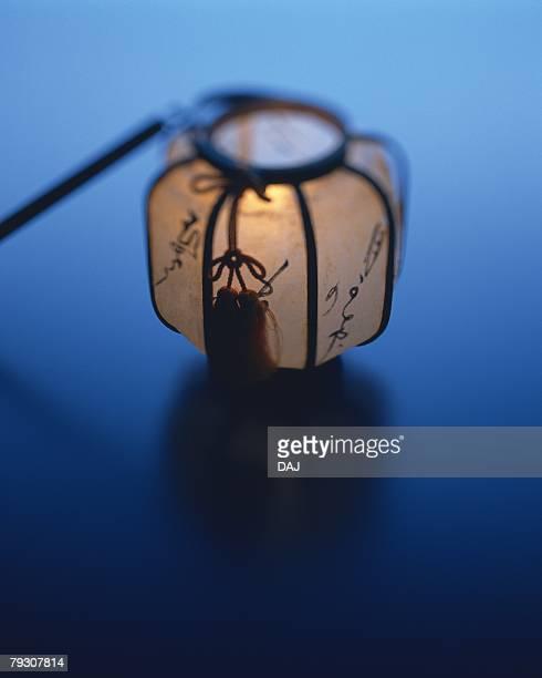 A Japanese lantern, Close Up, High Angle View