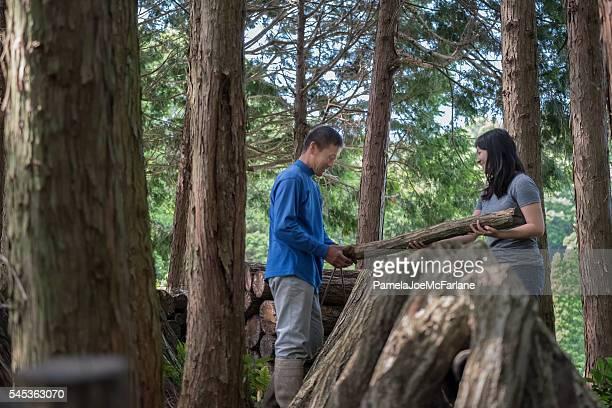 日本人男性、森の中で成長するキノコの丸太を積み重ねる女性 - エコツーリズム ストックフォトと画像