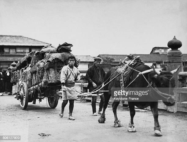 Japanese men beside their cart drawing by an ox in Japan