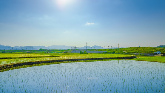 Japanese paddy field image. Japanese countryside. - gettyimageskorea