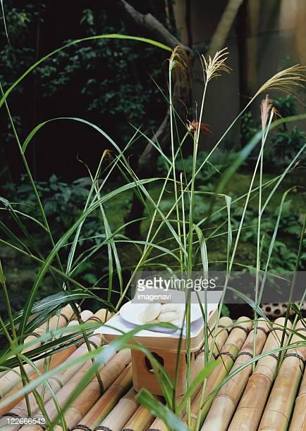 Japanese Pampas Grass and Dumpling