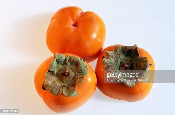 Japanese Persimmon fruit (Diospyros kaki)