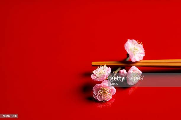 Japanese plum and chopsticks