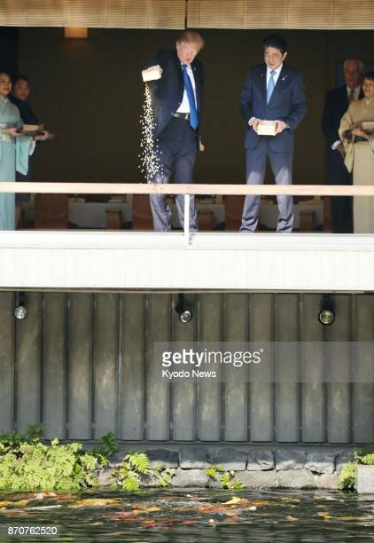 Japanese Prime Minister Shinzo Abe and US President Donald Trump feed carp in a pond at the Akasaka Palace state guesthouse in Tokyo on Nov 6 2017...