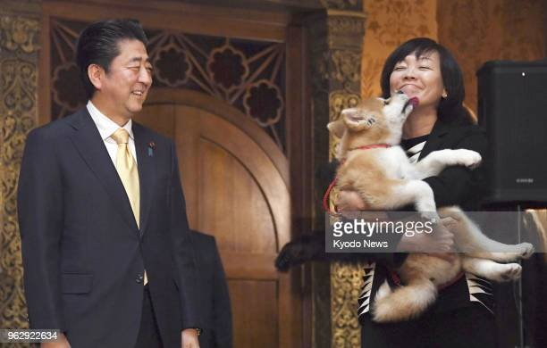 Japanese Prime Minister Shinzo Abe smiles as his wife Akie holds an Akita puppy in Moscow on May 26 2018 The puppy was offered to Russian Olympic...