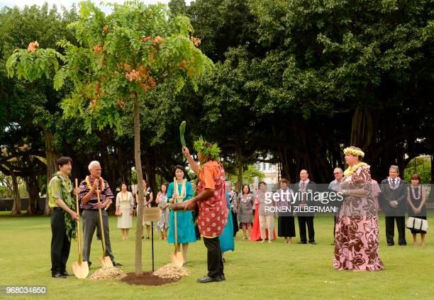 Japanese Prince Akishino Honolulu Mayor Kirk Caldwell and Princess Kiko plants a tree at Thomas Square Park in Honolulu HI Tuesday June 5 during his...