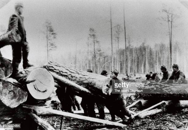Japanese prisoners of war are seen working at the Baikal-Amur Mainline construction site on an unspecified date circa 1948 in unspecified location in...