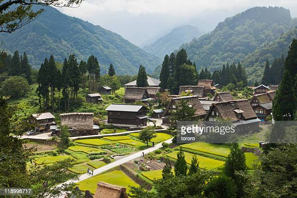 Japanese rural mountain village with rice fields