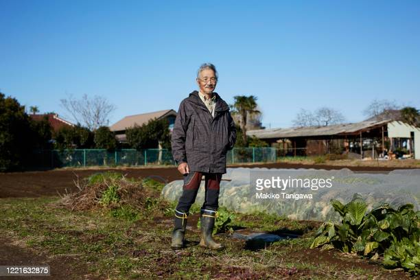 japanese senior farmer on his farm - gender role fotografías e imágenes de stock