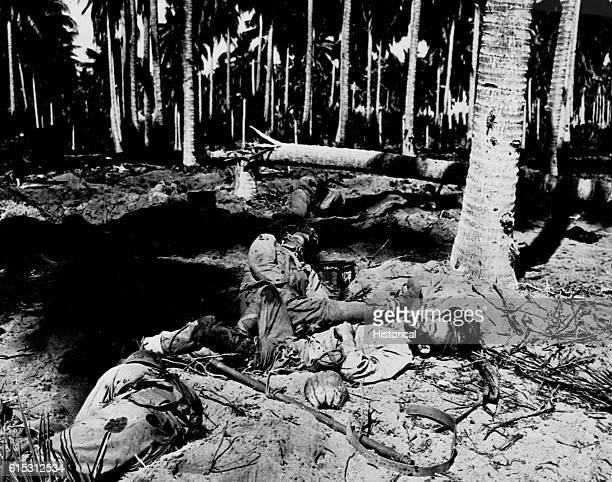 Japanese soldiers killed trying to cross the Tenaru River during the Battle of Tenaru on August 2 1942