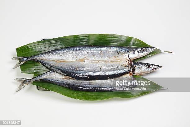 Japanese style marinated fish