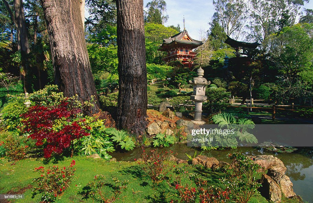 Japanese Tea Garden In Golden Gate Park Low Angle View San Francisco ...