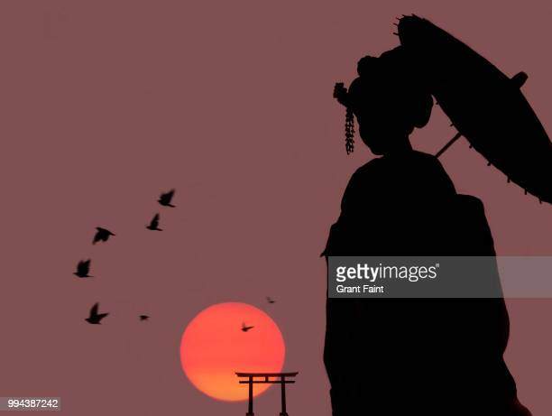 Japanese tori gate:composite image with silhouette of geisha