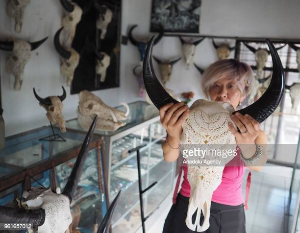 Japanese tourist looks at carvings of buffalo head art displayed at a souvenir shop in Bali Indonesia on May 23 2018 The price of buffalo head...