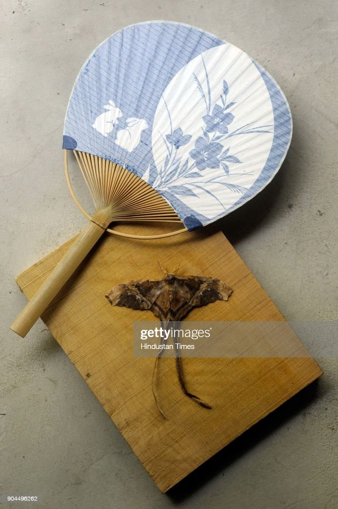 Japanese Uchiwa (hand fan) and a moth made by brunt paper by Japanese artist at Japanese house-cum-studio in Santiniketan, Birbhum dist, on January 8, 2018 in Kolkata, India. A six-member team from Japan is helping poet-curator Nilanjan Bandyopadhyay to build a traditional Japanese house-cum-studio as part of a cross-cultural creative experiment. Poet-curator Nilanjan Bandyopadhyay has embarked on the cross-cultural creative experiment in 2016, the centenary year of the Nobel laureates' first Japan visit. Poet Rabindranath Tagore was so impressed with Japanese arts, architecture and gardens that he had once written, had it been possible he would take an entire Japanese house, decked up with its furniture, to Bengal.