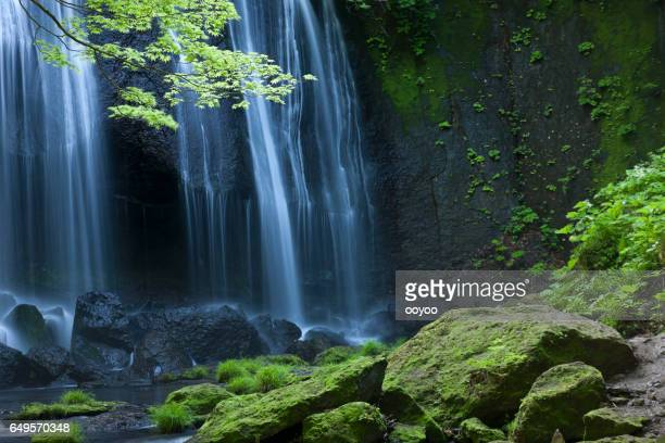 japanse waterfall landscape - spring flowing water stock pictures, royalty-free photos & images