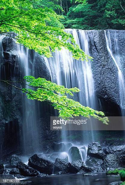 cachoeira japonês - fonte - fotografias e filmes do acervo