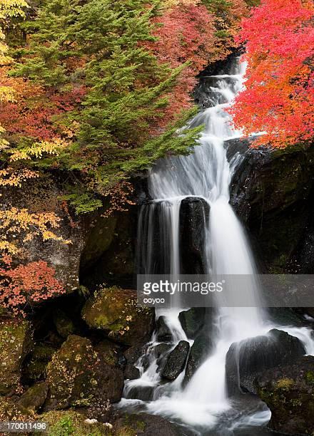 Japanese Waterfalls in Autumn