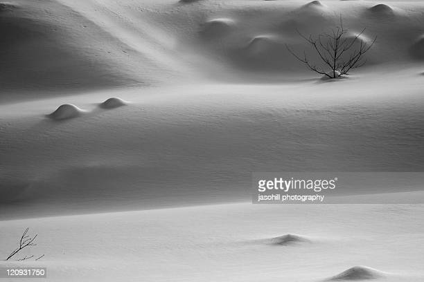 japanese winter - 八幡平市 ストックフォトと画像