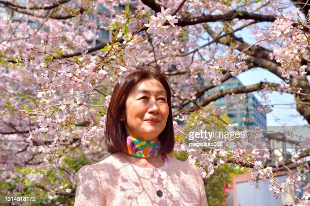 japanese woman appreciating cherry blossom in tokyo public park - march month stock pictures, royalty-free photos & images