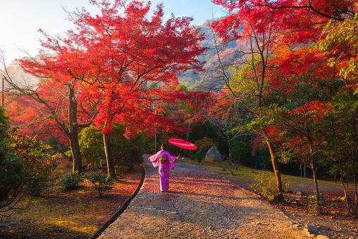Japanese woman enjoying the beauty koyo season, Arashiyama, Kyoto, Japan - gettyimageskorea
