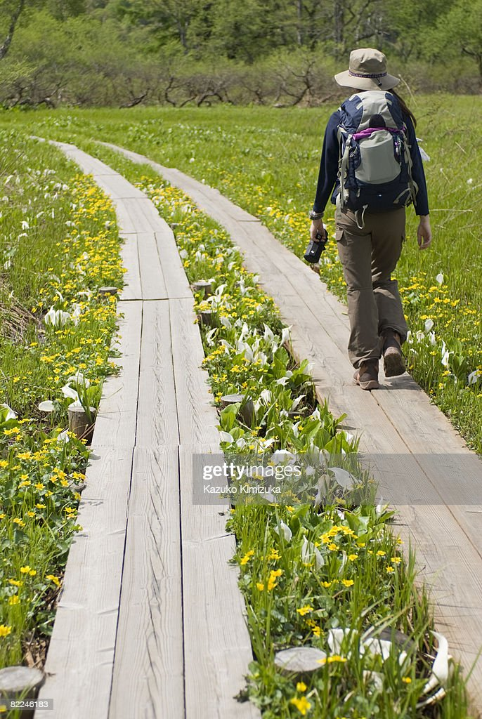 Japanese woman hiking in the park : Stock Photo