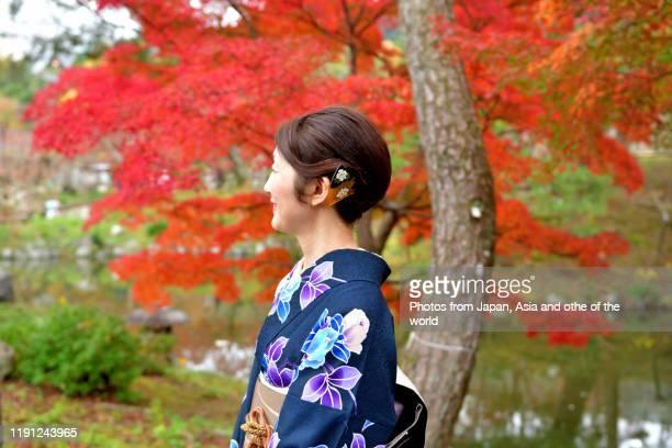 japanese woman in kimono appreciating autumn leaf color in kyoto - 着物 ストックフォトと画像