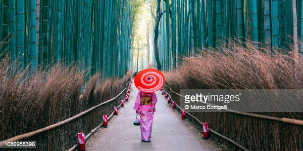 japanese woman walking in bamboo grove, arashiyama, kyoto, japan - region kinki stock-fotos und bilder