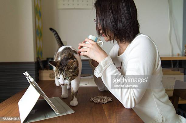A Japanese woman watching a digital tablet and a cat looking into