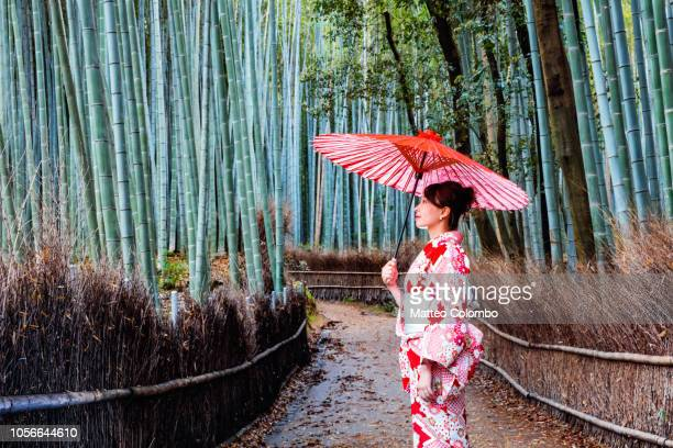 japanese woman with umbrella at bamboo grove, kyoto - geisha fotografías e imágenes de stock