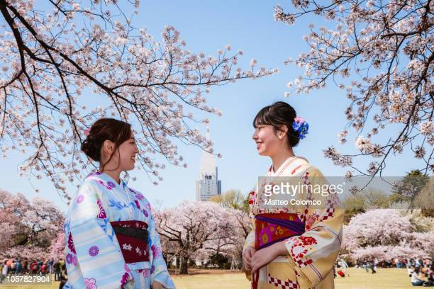 japanese women in kimono enjoying cherry blossom, japan - hanami stock pictures, royalty-free photos & images