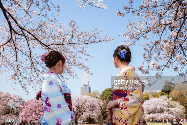 japanese women in kimono enjoying cherry blossom, japan - ueno park stock photos and pictures