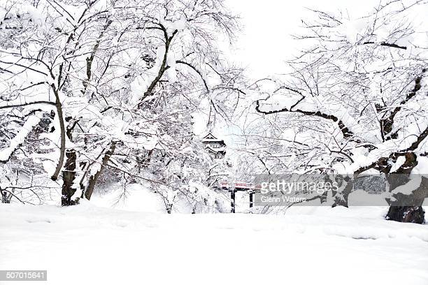 CONTENT] Japanesr castle covered in snow This is Hirosaki castle located in northern Japan