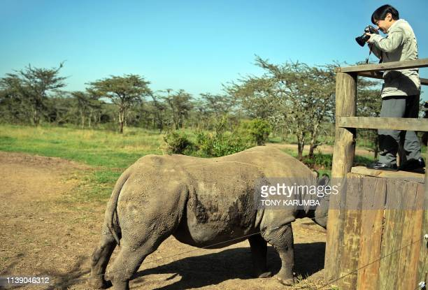 Japan's Crown Prince Naruhito takes a photo of a resident blindblack Rhinocerrous christened Baraka [swahili for blessing] on March 12 2010 at the...