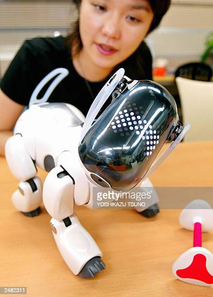 Japan's electronics giant Sony unveils the new robot dog 'AIBO ERS7' which reacts to a robot bone shaped toy AIBOne at the company's headquaters in...