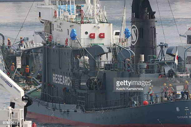 Japan's whaling vessel Shonan Maru 2 detaining a New Zealand antiwhaling activist Peter Bethune a member of the Sea Shepherd Conservation Society and...