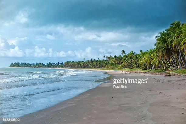 Japaratinga Beach, Maragogi city, Alagoas state, Brazil.