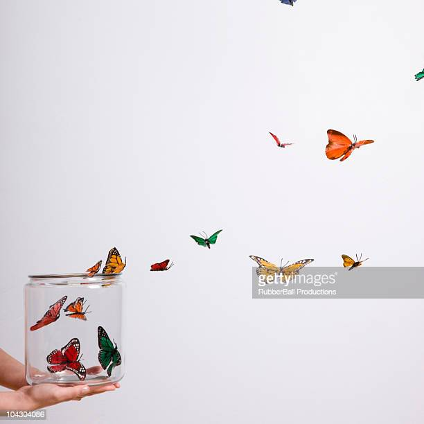 jar of butterflies - schmetterling stock-fotos und bilder
