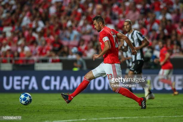 Jardel of SL Benfica during the match between SL Benfica and PAOK for the UEFA Champions League Play Off at Estadio da Luz on August 21 2018 in...