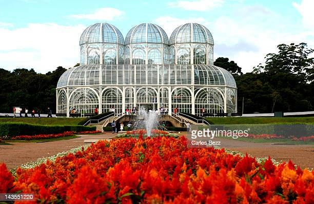 jardim botanico curitiba - curitiba stock pictures, royalty-free photos & images