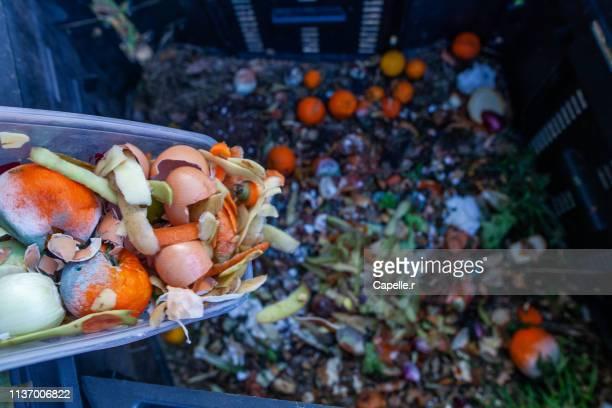 jardin - composter des déchets verts - aliments et boissons photos et images de collection
