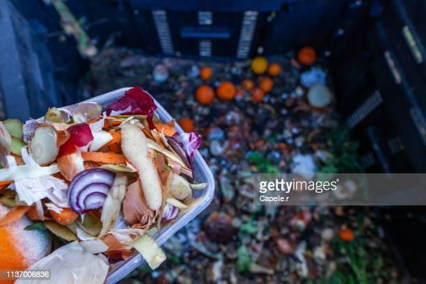 jardin - composter des déchets verts - humus photos et images de collection